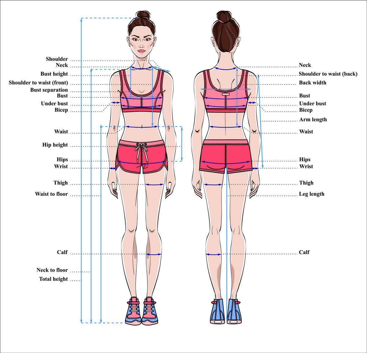 Bezeichnungen für englische Körpermaße
